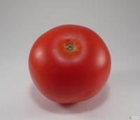 Solanum lycopersicum -- Tomate